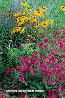 63821-08720 Tidal Wave Petunias, Indian Summer Black-eyed Susan's, Zinnias, Blue Veronica, Russian Sage & Purple Salvia  Marion Co.  IL