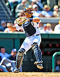 5 March 2009: Detroit Tigers' catcher Matt Treanor in action during a Spring Training game against the Washington Nationals at Joker Marchant Stadium in Lakeland, Florida. The Tigers defeated the visiting Nationals 10-2 in the Grapefruit League matchup. Mandatory Photo Credit: Ed Wolfstein Photo