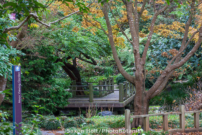 Entry (with sign) to Moon Viewing Garden in San Francisco Botanical Garden with fall foliage color in Japanese Maple trees.