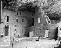 &ldquo;Spruce Tree House&rdquo;<br />