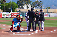 Inland Empire 66ers mascot Bernie spies on the pregame meeting between the managers and umpires before a California League game between the Inland Empire 66ers and the Modesto Nuts on April 10, 2019 at San Manuel Stadium in San Bernardino, California. Inland Empire defeated Modesto 5-4 in 13 innings. (Zachary Lucy/Four Seam Images)