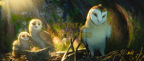 Eglantine, as voiced by ADRIENNE deFARIA, Soren, as voiced by JIM STURGESS, and Kludd, as voiced by RYAN KWANTEN.in Legend of the Guardians: The Owls of Ga'Hoole.*Filmstill - Editorial Use Only*.CAP/FB.Supplied by Capital Pictures.