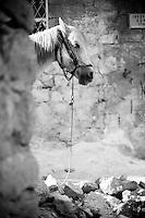 Les ruelles de la vieille ville de Mardin où vivent les familles kurdes et arabes les plus pauvres. La municipalité a entrepris de paver les passages afin de diminuer l'insalubrité et de préserver la richesse urbanistique et architecturale.<br /> <br /> The streets of the old city of Mardin where Kurdish and Arab poorest families live.