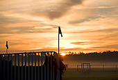 Sunrise, Sprindale Race Course, Camden, SC.