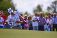 Justin Thomas (USA) chips on to 6  during round 1 of the Honda Classic, PGA National, Palm Beach Gardens, West Palm Beach, Florida, USA. 2/23/2017.<br /> Picture: Golffile | Ken Murray<br /> <br /> <br /> All photo usage must carry mandatory copyright credit (&copy; Golffile | Ken Murray)