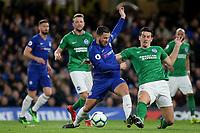 Chelsea vs Brighton & Hove Albion 03-04-19