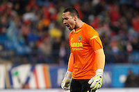 Sergio Asenjo of Villarreal during La Liga match between Atletico de Madrid and Villarreal at Vicente Calderon stadium in Madrid, Spain. December 14, 2014. (ALTERPHOTOS/Caro Marin) /NortePhoto