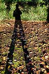 10.11.18 - Long Legs....