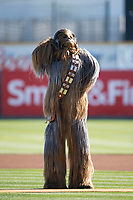 Star Wars character Chewbacca interacts with San Jose Giants mascot Gigante (not pictured) before a California League game between the Lancaster JetHawks and San Jose Giants at San Jose Municipal Stadium on May 12, 2018 in San Jose, California. Lancaster defeated San Jose 7-6. (Zachary Lucy/Four Seam Images)