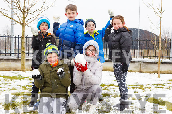 In Sundays Well enjoying the snow are.<br /> Kneeling l-r, David Slattery and Sarah Maunsell.<br /> Standing l-r, Ryan McCord, Brendan Maunsell, Philip Moriarty and Maja Cieslak.
