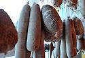 07/02/12 - PRADELLES - HAUTE LOIRE - FRANCE - Salaisons Laurent MONTAGNE - Photo Jerome CHABANNE