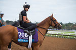 DEL MAR, CA - NOVEMBER 01: Good Magic, owned by eFive Racing Thoroughbreds & Stonestreet Stables, LLC and trained by Chad C. Brown, watches the morning workouts at Del Mar Thoroughbred Club on November 1, 2017 in Del Mar, California. (Photo by Anna Purdy/Eclipse Sportswire/Breeders Cup)