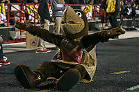 College Park, MD - October 22, 2016: Maryland Terrapins mascot during game between Michigan St. and Maryland at  Capital One Field at Maryland Stadium in College Park, MD.  (Photo by Elliott Brown/Media Images International)