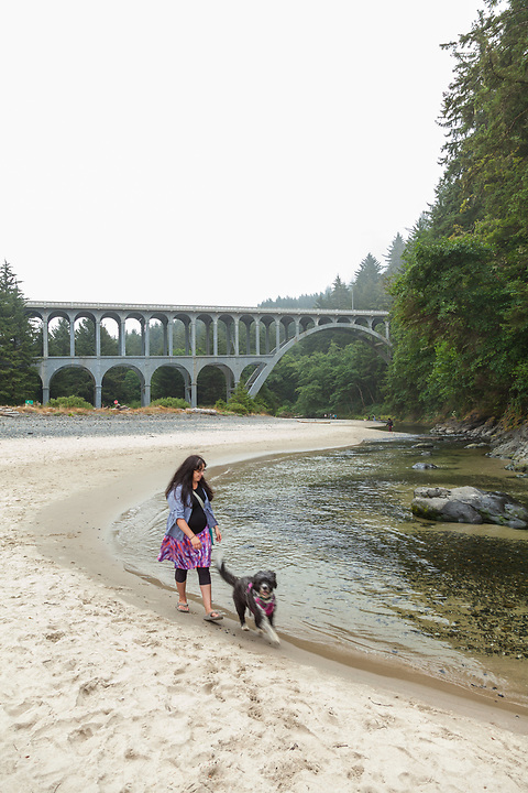 beach scenes and tide pools and Cape Creek Bridge at Heceta Head beach, on the Oregon Coast, photographed at low tide on a foggy day