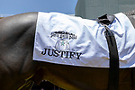 """ARCADIA, CA  JUNE 23: Saddle cloth on Seabiscuit show the silks of China Horse Club and WinStar Farms in the paddock on """"Justify Day"""" on June 23, 2018 at Santa Anita Park in Arcadia, CA.  (Photo by Casey Phillips/Eclipse Sportswire/Getty Images)"""