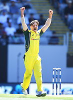 Australian bowler Marcus Stoinis celebrates the wicket of Williamson.  International One Day Cricket. New Zealand Black Caps v Australia. Chappell–Hadlee Trophy, Game 1. Eden Park Monday 30 January 2017 © Copyright photo: Andrew Cornaga / www.photosport.nz