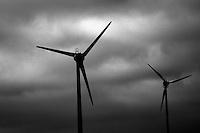 Wind powered generators at Denham.  Picture:Trevor Collens