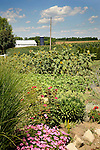 July vegetable garden, Union County, PA.