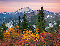 Mount Baker National Forest