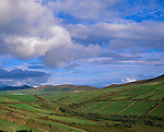 County Kerry, Ireland   <br /> Stone fences define the green pastures and farms on a Dingle Peninsula hillside