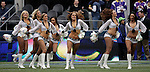 Seattle Seagals perform during a time out during the Seahawks game against the Minnesota Vikings at CenturyLink Field in Seattle, Washington on  November 4, 2012.  The Seahawks beat the Vikings 30-20.   ©2012. Jim Bryant Photo. All Rights Reserved.