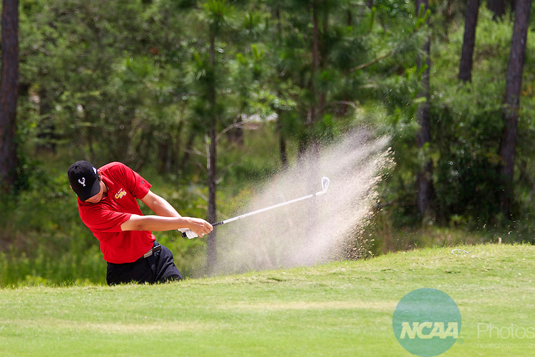 17 MAY 2013: Brad Shigezawa of Claremont McKenna College hits out of a sand trap during the Division III Men's Golf Championship held at the Sandestin Golf and Beach Resort Raven Course in Destin, FL. Shigezawa was the 2013 Division lll Men's Champion. Mark Wallheiser/NCAA Photos