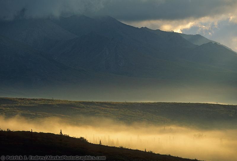 Morning fog over the tundra in Denali National Park, Alaska
