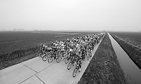 Peloton racing through the windy Moeren landscape<br /> <br /> Handzame Classic 2015