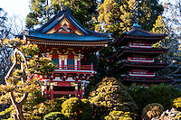United States, California, San Francisco. Golden Gate park. The Japanese Tea Garden is the oldest public Japanese garden in the United States. Pagoda.