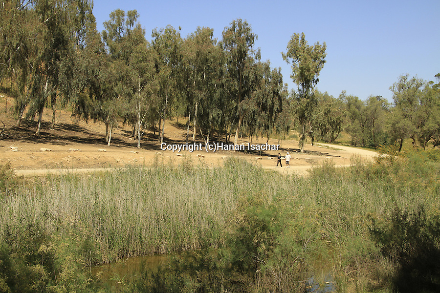 Israel, Nahal Gerar springs in the Northern Negev