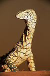 Australia, Northern Territory; Perentie lizard on red sand; Australia's largest lizard