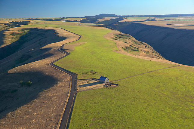 Farming on the Palouse