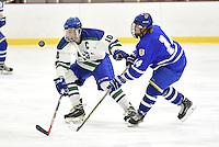 Men's Ice Hockey vs Western New England_1-18-17