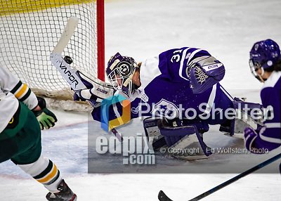 2 February 2020: Holy CrossCrusader Goaltender Jada Brenon, a Sophomore from Pendleton, NY, gives up a third period goal to the University of Vermont Catamounts at Gutterson Fieldhouse in Burlington, Vermont. Brenon made 51 saves in the game, keeping the Crusaders in the lead for almost the entire game. However, the Lady Cats rallied in the 3rd period to tie the Crusaders 2-2 in NCAA Women's Hockey East play. Mandatory Credit: Ed Wolfstein Photo *** RAW (NEF) Image File Available ***