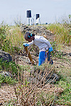 Oakland CA Preteen girl involved in beach clean up on shores of San Francisco Bay on.Earth Day