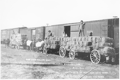 Loading hay bales into standard gauge box cars in Alamosa.<br /> D&amp;RG  Alamosa, CO  1906