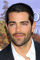 BEVERLY HILLS, CA - JULY 27: Jesse Metcalfe at the Hallmark Channel and Hallmark Movies and Mysteries Summer 2016 TCA press tour event on July 27, 2016 in Beverly Hills, California. Credit: David Edwards/MediaPunch
