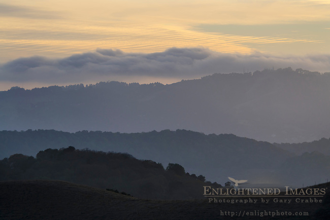East Bay and Berkeley Hills at sunset, California