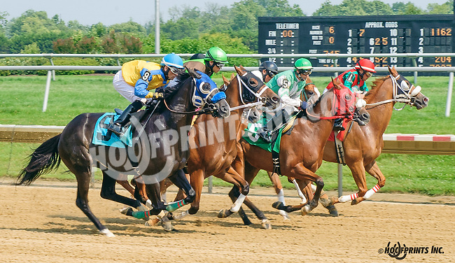 Miss Amalita winning at Delaware Park on 7/1/15