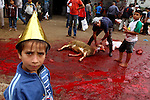Palestinian butchers slaughter goats on the first day of Eid al-Adha in Gaza City, Tuesday, Nov. 16, 2010. Muslims worldwide celebrate Eid al-Adha, or the Feast of the Sacrifice on Nov. 16, by sacrificial killing of sheep, goats, cows or camels. The slaughter commemorates the biblical story of Abraham, who was on the verge of sacrificing his son to obey God's command, when God interceded by substituting a ram in the child's place.. Photo by Ashraf Amra