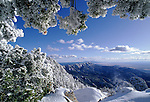 Winter view in the Sandia Mountain Wilderness Area, New Mexico, USA