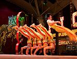 Peking Acrobats FSE