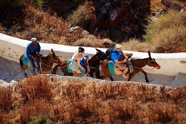 Donkeys with tourists on the path from the harbour. oia ( Ia ) Santorini Town- Greek Cyclades islands - Photos, pictures and images