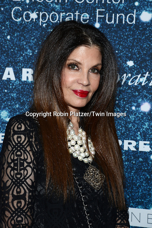 Lori Rodkin attends the Stella McCartney Honored by Lincoln Center at Gala on November 13, 2014 at Alice Tully Hall in New York City, USA. She was given the Women's Leadership Award which was presented bythe LIncoln Center for the Performing Arts' Corporate Fund.<br /> <br /> photo by Robin Platzer/Twin Images<br />  <br /> phone number 212-935-0770