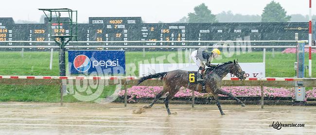 Trulamo winning at Delaware Park on 8/19/15