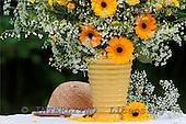 Carl, FLOWERS, photos, SWLA4003,#f# Blumen, Natur, flores, naturaleza