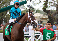 ARCADIA, CA: October 06: #5 Hartnel before the Breeders Cup win and you're in Speakeasy Stakes at Santa Anita Park on October 06, 2018 in Arcadia, California (Photo by Chris Crestik/Eclipse Sportswire)