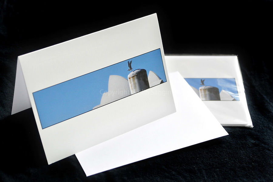 Blank greeting cards - 18x12.5cm (7x5 inch). Come with envelope and in a sealed, clear cellophane bag.