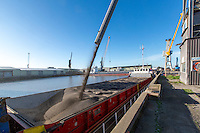 Loading oil seed rape for export onto a boat at Boston Dock - Lincolnshire, December