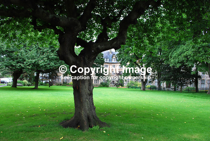 One of the many green spaces and university buildings tucked away behind a busy main street in St Andrew's, Fife, Scotland, 200808220551..Copyright Image from Victor Patterson, 54 Dorchester Park, Belfast, UK, BT9 6RJ..Tel: +44 28 9066 1296.Mob: +44 7802 353836.Voicemail +44 20 8816 7153.Skype: victorpattersonbelfast.Email: victorpatterson@mac.com.Email: victorpatterson@ireland.com (back-up)..IMPORTANT: If you wish to use this image or any other of my images please go to www.victorpatterson.com and click on the Terms & Conditions. Then contact me by email or phone with the reference number(s) of the image(s) concerned.
